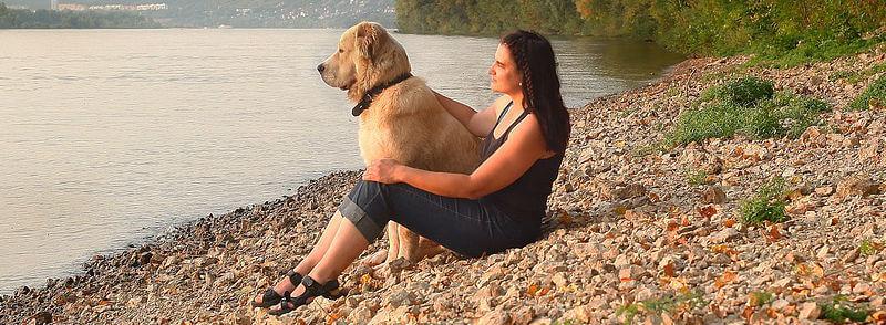 חופשה עם כלבים